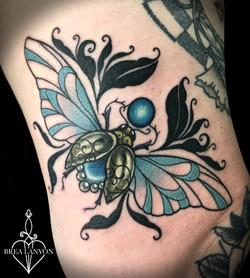 steph beetle