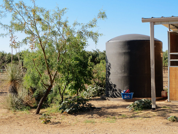 wil-howe-ranch-sw-outpost-cochise-az-093