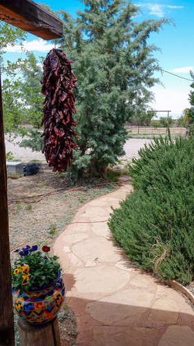 wil-howe-ranch-sw-outpost-cochise-az-123