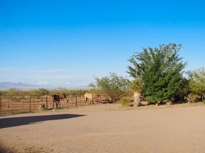 wil-howe-ranch-sw-outpost-cochise-az-281
