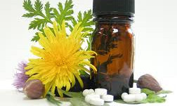 Harvard Study Has Good News for Homeopathic Medicine