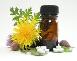 Harvard Study Has Good News for Homeopathic Medicine
