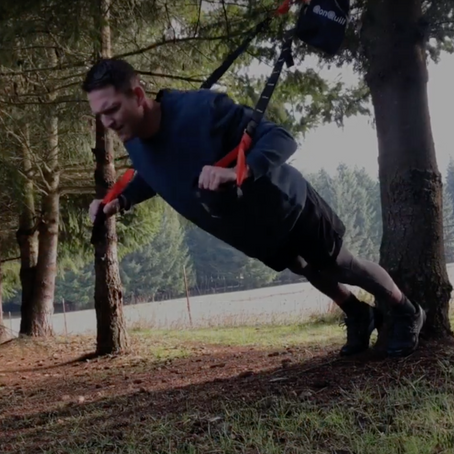 Trees & TRX: Working Out at Home With a  Suspension Strap System