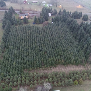 AERIAL OF THE FARM LOOKING WEST