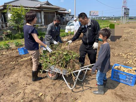 施設に提供する野菜収穫のお手伝い