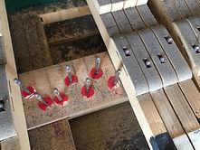 Waagebalkenfilze die von Motten angefressen sind