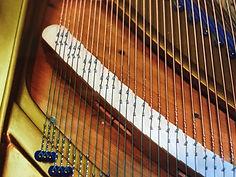 neues Stegdoppel im Bass für Schiedmayer Konzertflügel