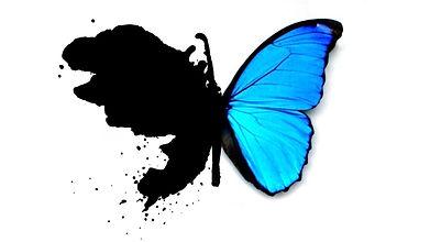 metamorphosis havening logo.jpg