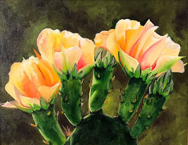 Cactus Blossom.jpg
