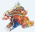Logo small color splash-silhouette color swoosh only gray background.jpg