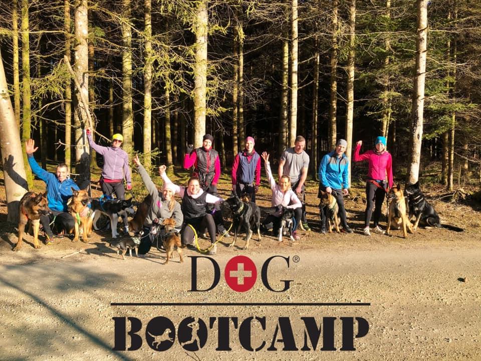 Dog Bootcamp Gruppenfoto