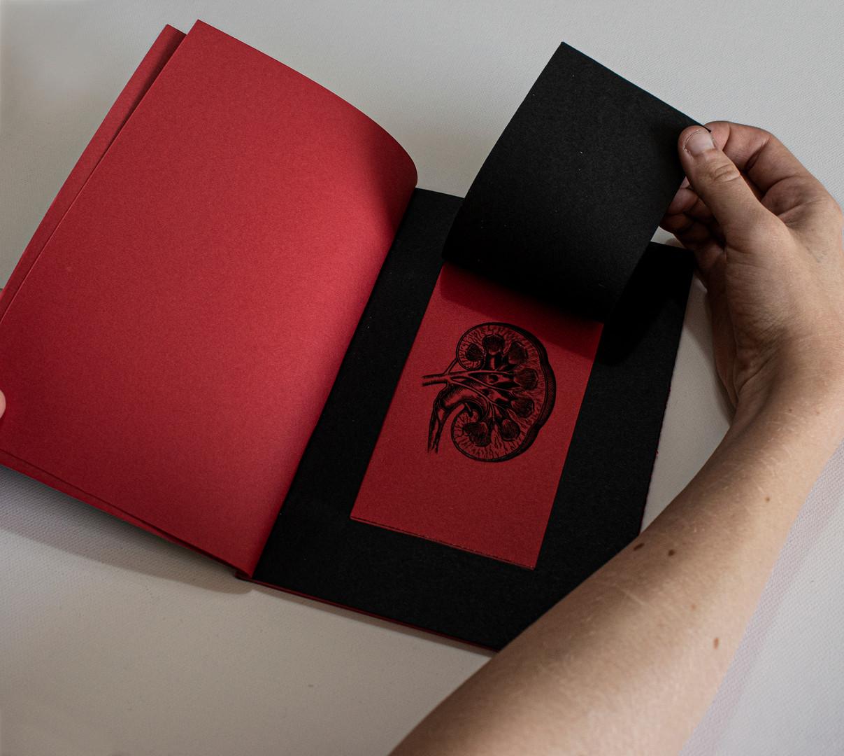 02 BOOK2.jpg