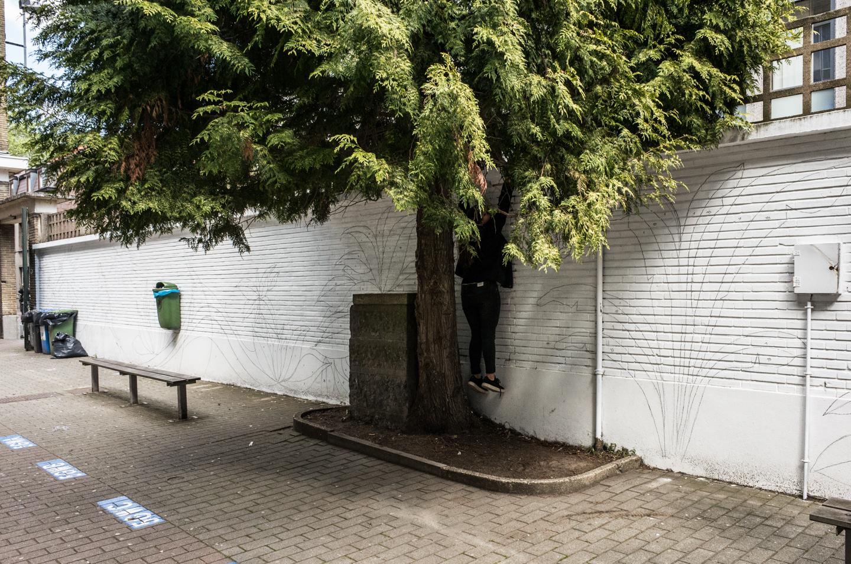 Dendermonde (Bel) - 2016