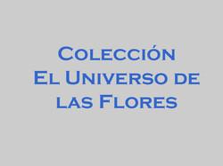 colección_El_mundo_de_las_flores