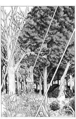 Fireflies page