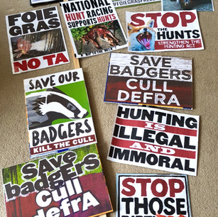 Animal rights protest placards