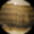 stromatolite circle wix.png