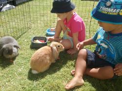 Resident Bunnies