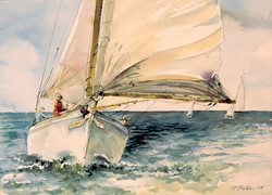 Sailing On Barnegat Bay