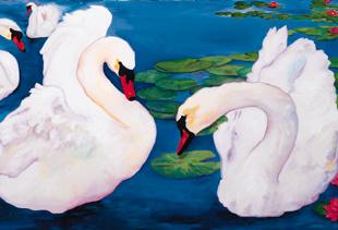 Swan Song, Spring Lake