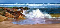 Shore Colors