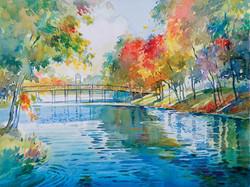 Spring Lake In Autumn