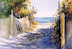 Sunlit Dunes
