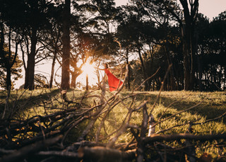 """<img src=""""red dress in the woods photo.jpg"""" alt=""""Women in red dress dancing in the middle of the woods surrounded by trees at sunset"""">"""