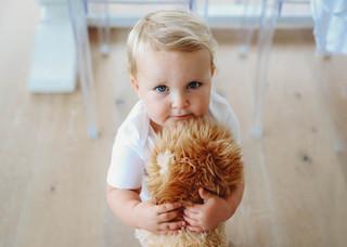 "<img src=""maternity photo.jpg"" alt=""Maternity photoshoot motherhood toddler with teddy"">"