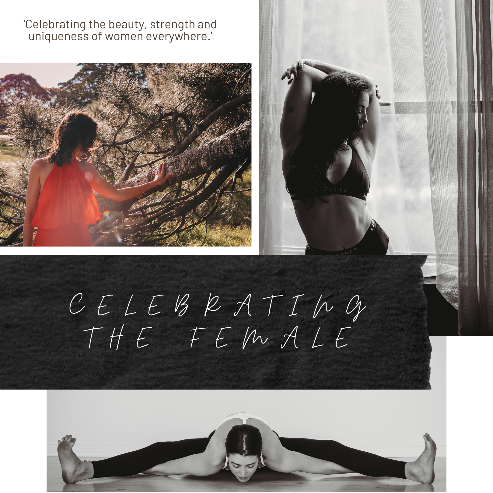 """<img src=""""celebrating the female photo.jpg"""" alt=""""Celebrating the female title page with yoga pose pole dancer posed by window and woman in red dress in the woods"""">"""