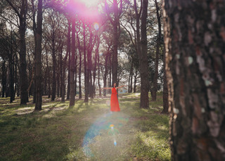 """<img src=""""red dress in the woods photo.jpg"""" alt=""""Women in red dress standing in the middle of the woods surrounded by trees"""">"""