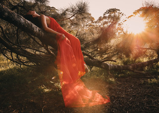 """<img src=""""red dress in the woods photo.jpg"""" alt=""""Women in red dress lying on a tree branch with the sun shining through the branches"""">"""