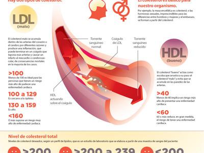 Colesterol: ¿el malo de la película?