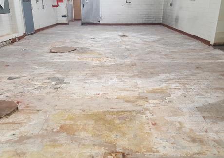 BG Floor Before.jpg
