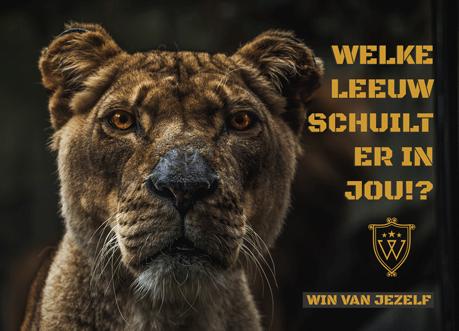 win van jezelf leeuw