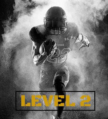Level 2 Coaching