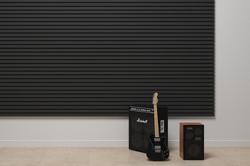 sab-acoustic-standart_0