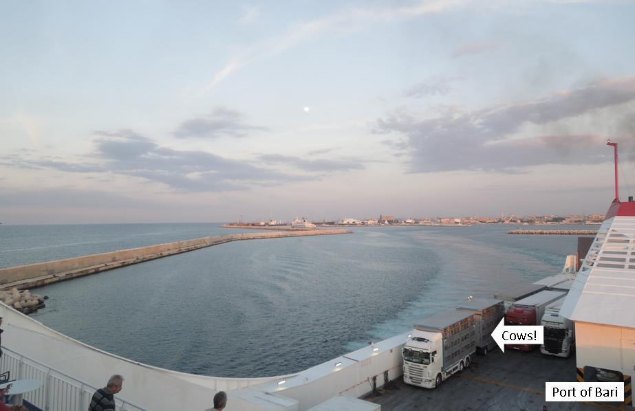 ferry14.jpg