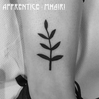 by Apprentice, Mhairi