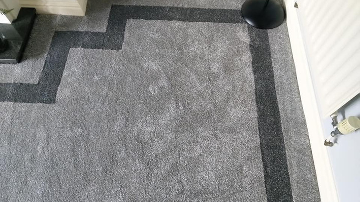 Carpet with Boarder