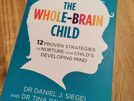 Book Review Part 1: The Whole Brain Child by Dan Siegel and Tina Payne Bryson