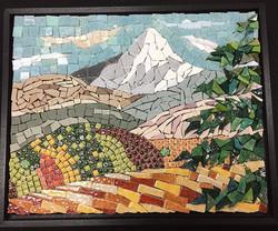 Mt Hood Vineyard