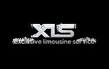 XLS Logo