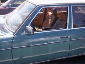 W123  Door Front Left
