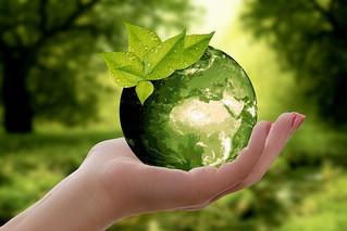 environnement_planète.jpg