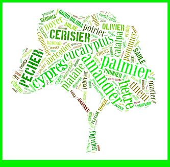 arbres-leopold-lena-2.png