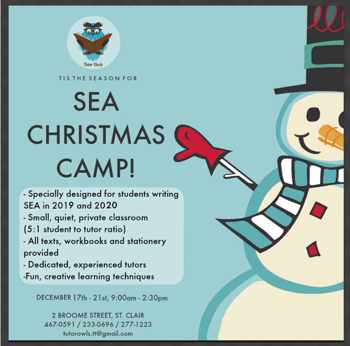 SEA Christmas Camp 2018.png