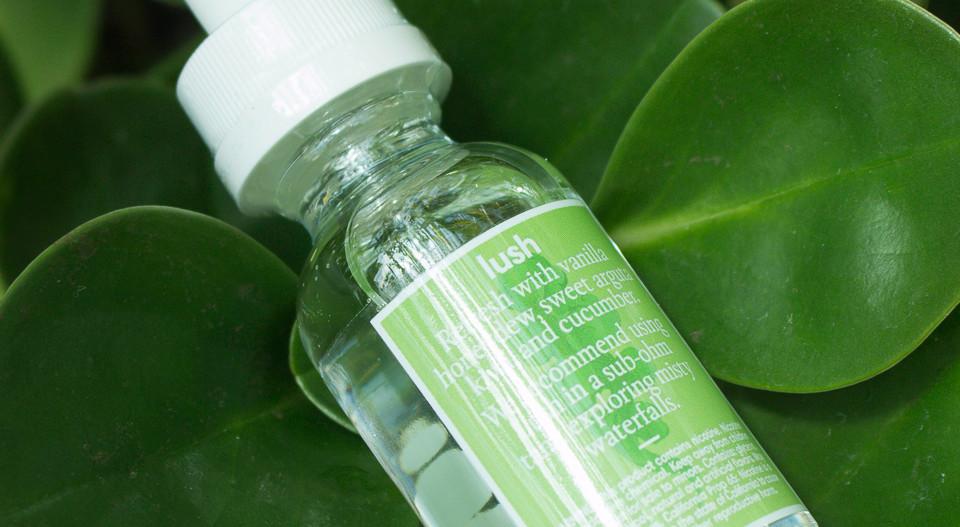 Lush Wax Plant.jpg