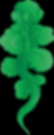 Aeris Website Lush smoke 75%.png