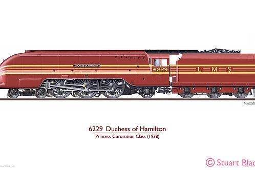 6229 'Duchess of Hamilton' Locomotive - Art Print